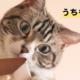 [ブログ]日本で1番目立つ看板をみたいかッ!?